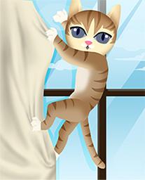 cat-09