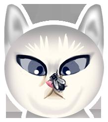 cat-24