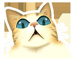 cat-31